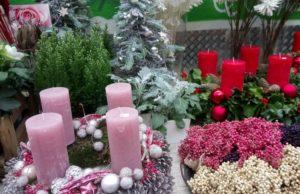 ドイツのアドベントクランツ花屋さん